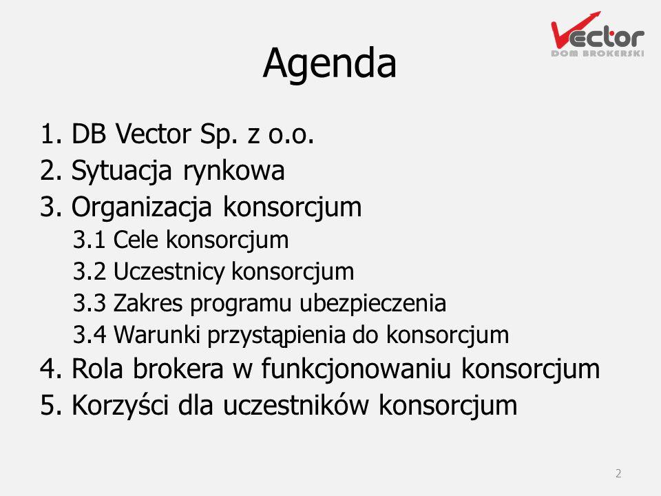 Agenda 1. DB Vector Sp. z o.o. 2. Sytuacja rynkowa