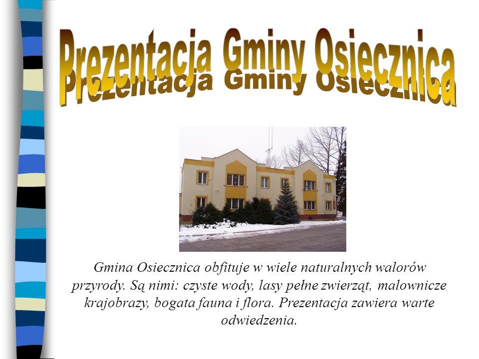 Prezentacja Gminy Osiecznica