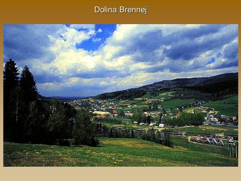 Dolina Brennej