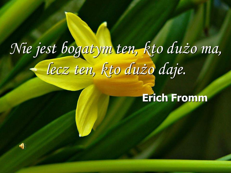 Nie jest bogatym ten, kto dużo ma, lecz ten, kto dużo daje.