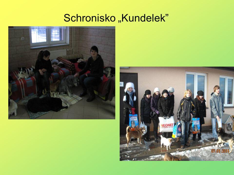 """Schronisko """"Kundelek"""