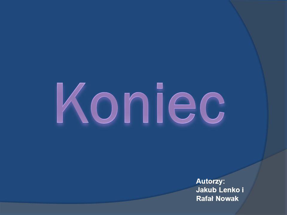 Koniec Autorzy: Jakub Lenko i Rafał Nowak
