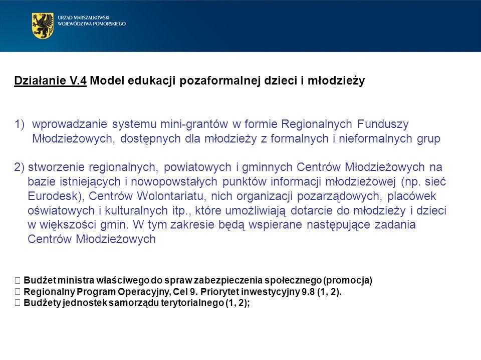 Działanie V.4 Model edukacji pozaformalnej dzieci i młodzieży