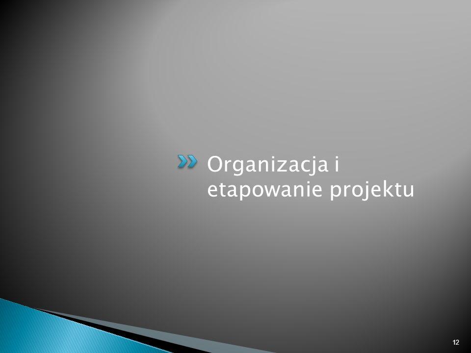 Organizacja i etapowanie projektu
