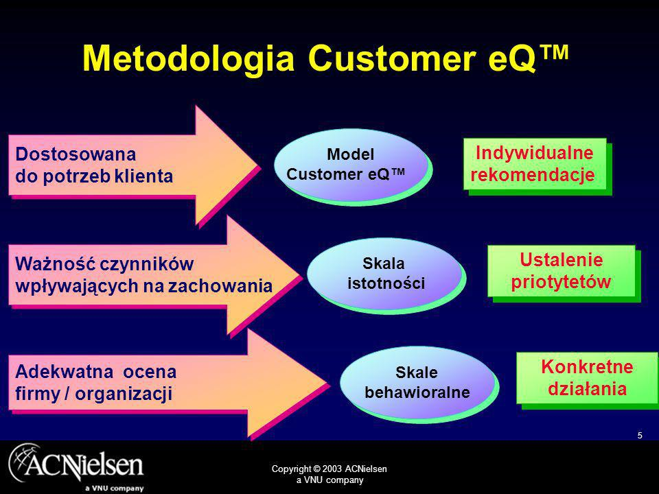 Metodologia Customer eQ™