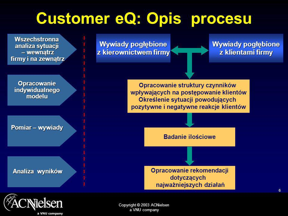 Customer eQ: Opis procesu