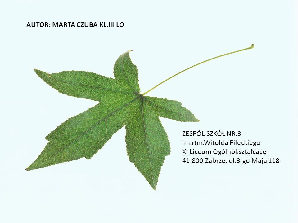 AUTOR: MARTA CZUBA KL.III LO