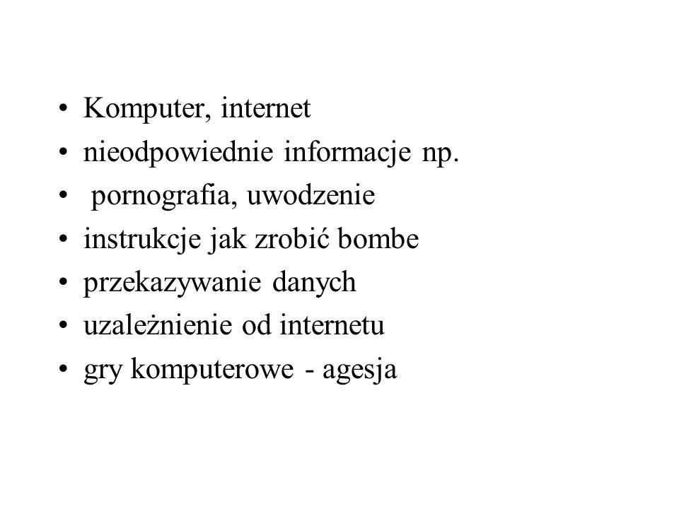 Komputer, internet nieodpowiednie informacje np. pornografia, uwodzenie. instrukcje jak zrobić bombe.