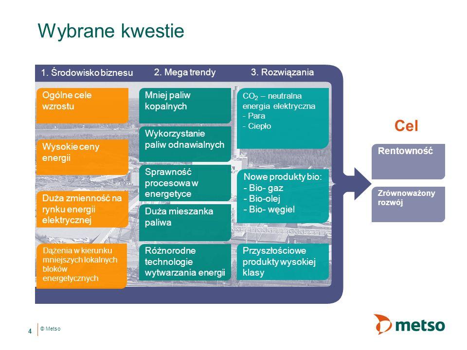 Wybrane kwestie Cel 1. Środowisko biznesu 2. Mega trendy