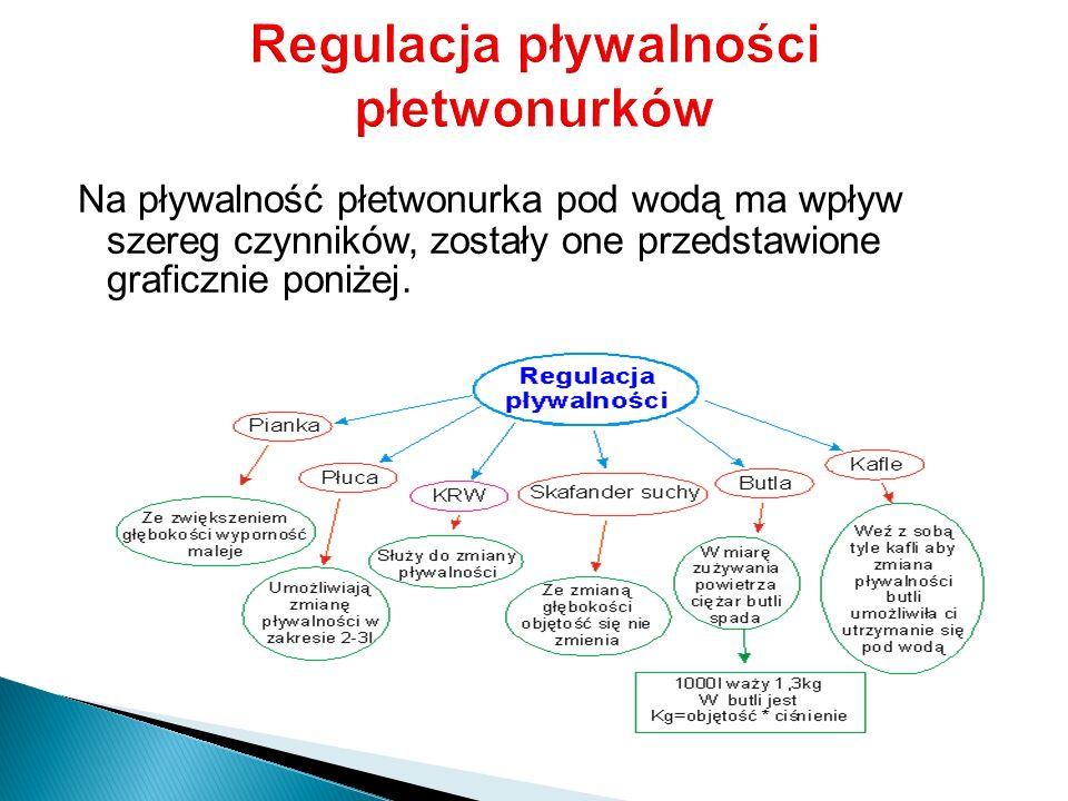 Regulacja pływalności płetwonurków