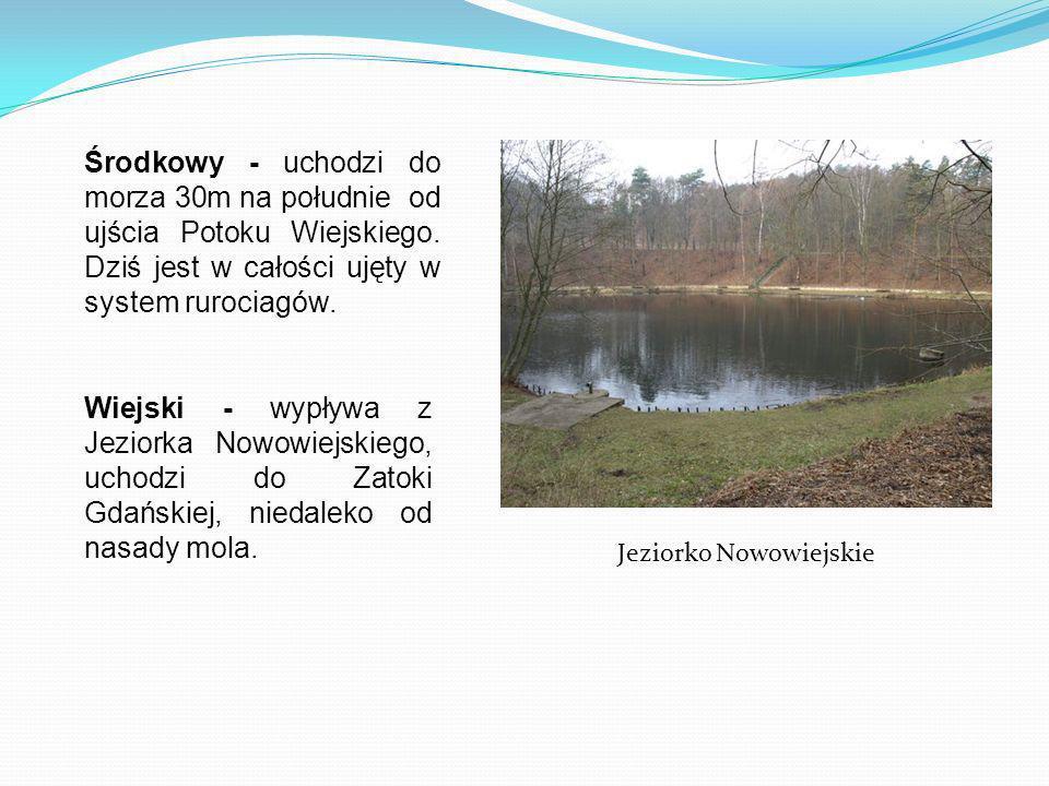 Jeziorko Nowowiejskie