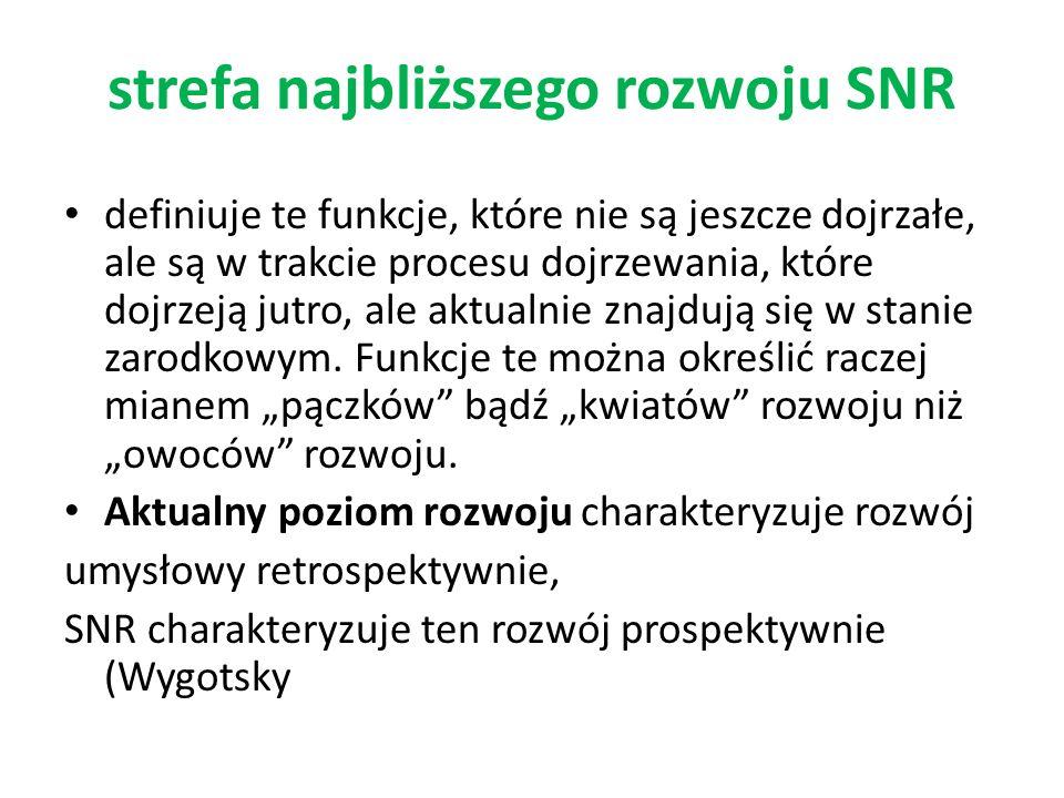 strefa najbliższego rozwoju SNR