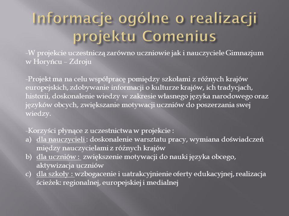 Informacje ogólne o realizacji projektu Comenius