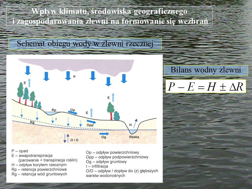 Schemat obiegu wody w zlewni rzecznej