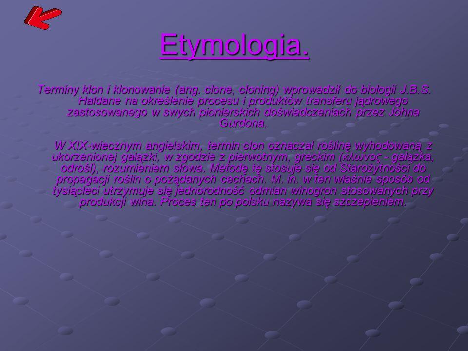 Etymologia.