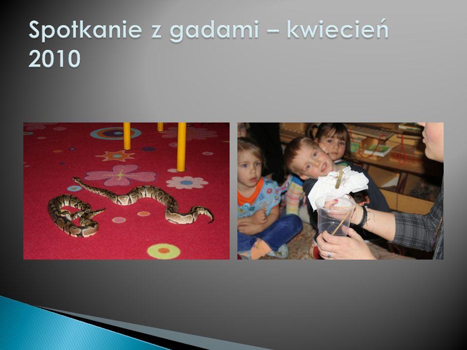Spotkanie z gadami – kwiecień 2010