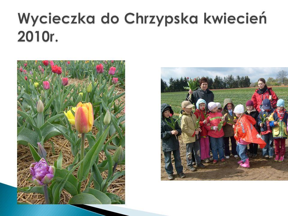 Wycieczka do Chrzypska kwiecień 2010r.