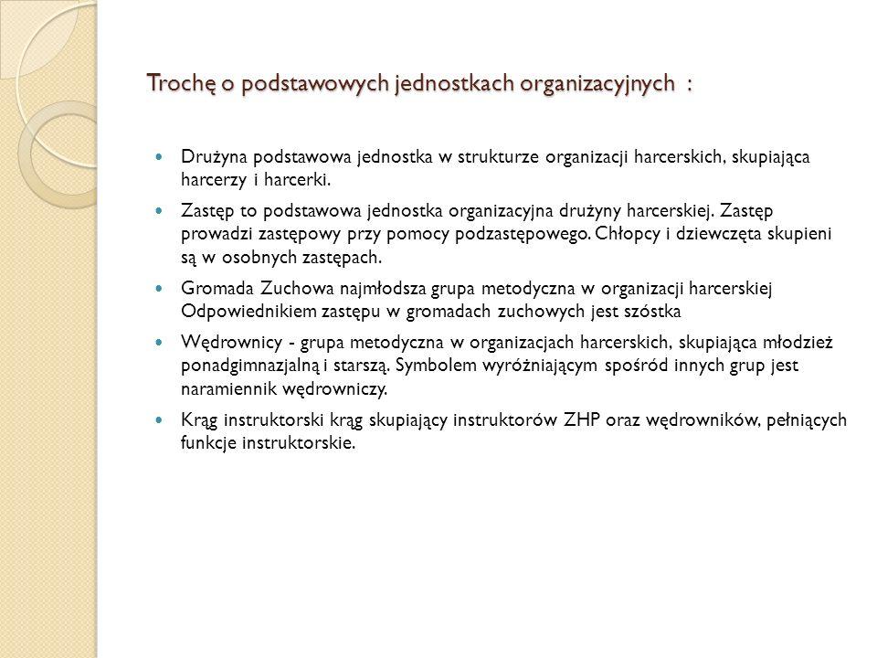 Trochę o podstawowych jednostkach organizacyjnych :
