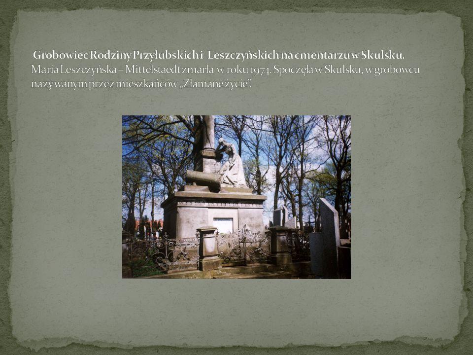 Grobowiec Rodziny Przyłubskich i Leszczyńskich na cmentarzu w Skulsku