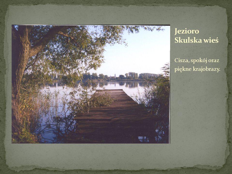 Jezioro Skulska wieś Cisza, spokój oraz piękne krajobrazy.