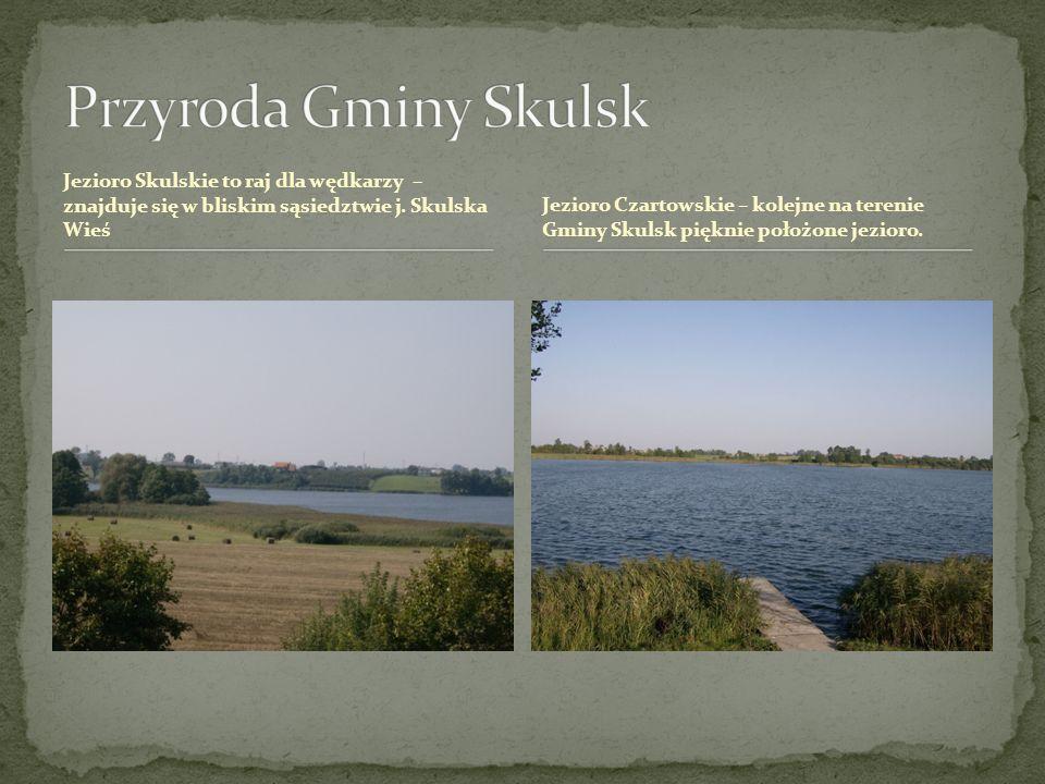 Przyroda Gminy SkulskJezioro Skulskie to raj dla wędkarzy – znajduje się w bliskim sąsiedztwie j. Skulska Wieś.