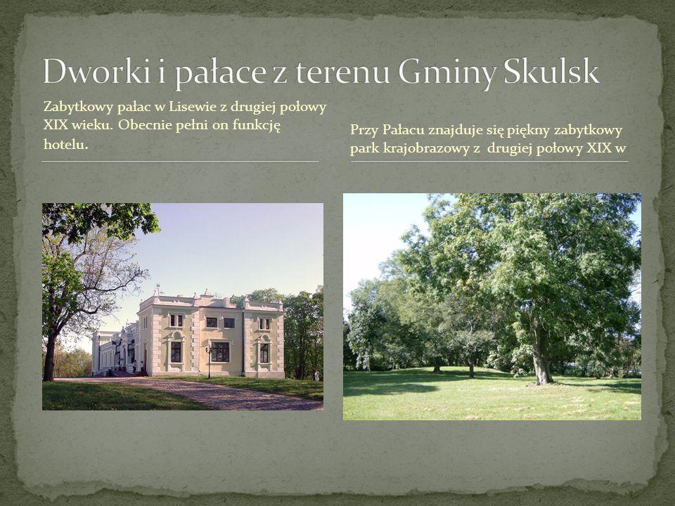 Dworki i pałace z terenu Gminy Skulsk