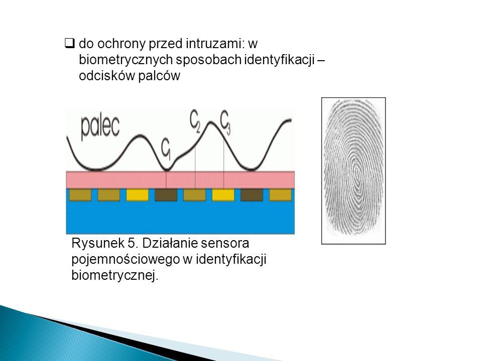 do ochrony przed intruzami: w biometrycznych sposobach identyfikacji – odcisków palców
