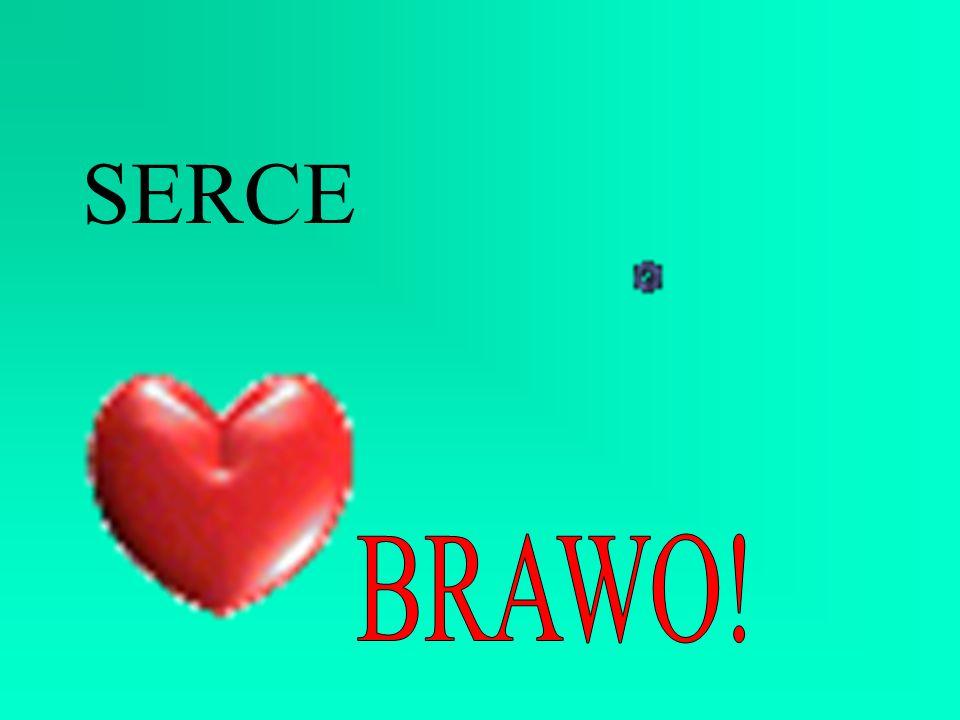 SERCE BRAWO!