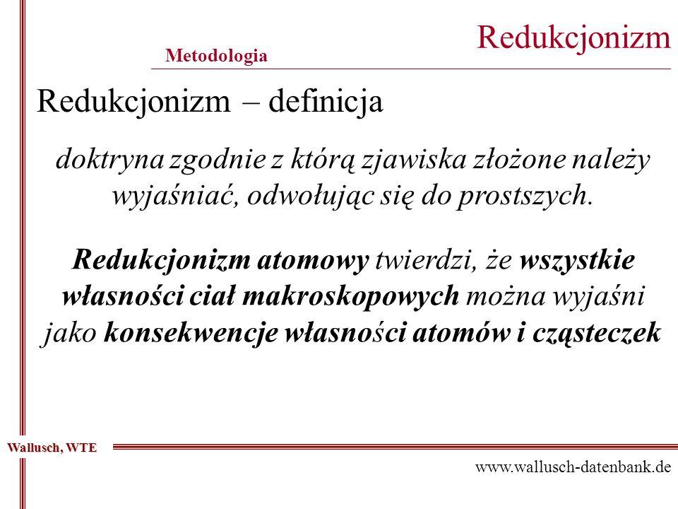 Redukcjonizm – definicja