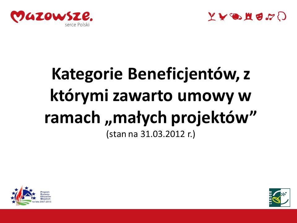 """Kategorie Beneficjentów, z którymi zawarto umowy w ramach """"małych projektów (stan na 31.03.2012 r.)"""