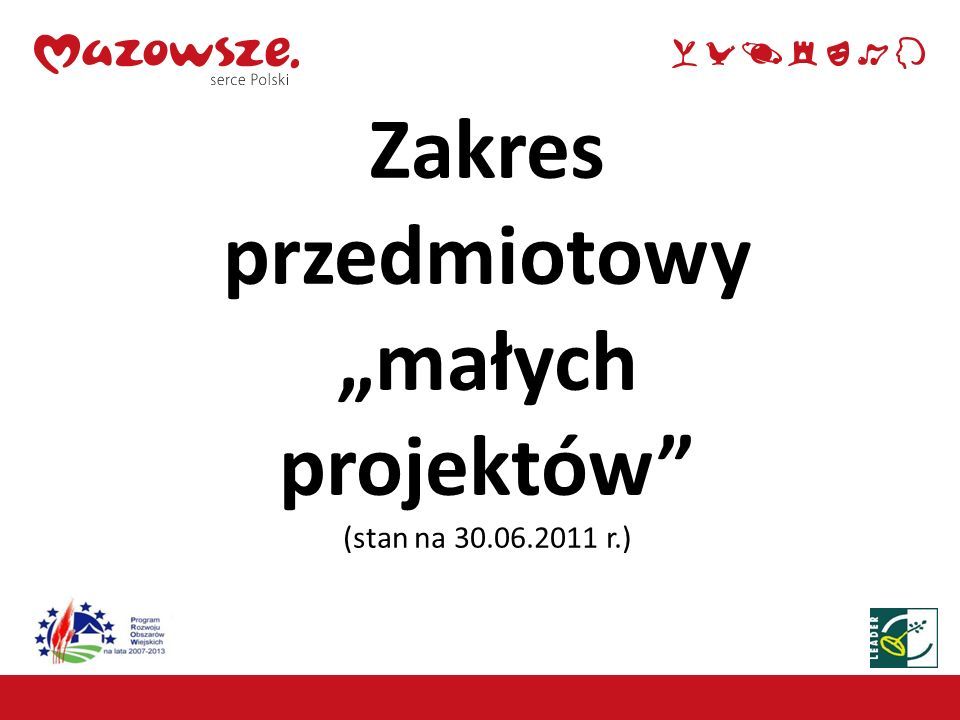 """Zakres przedmiotowy """"małych projektów (stan na 30.06.2011 r.)"""