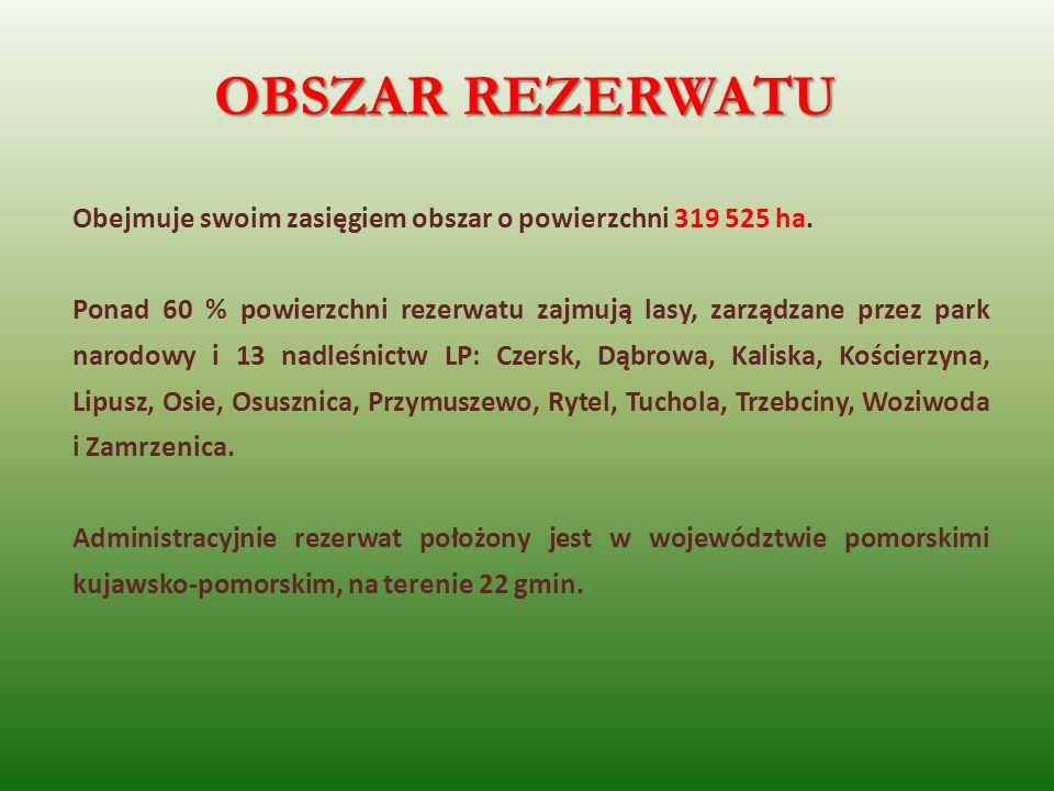 OBSZAR REZERWATU Obejmuje swoim zasięgiem obszar o powierzchni 319 525 ha.