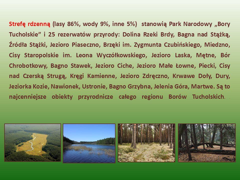 """Strefę rdzenną (lasy 86%, wody 9%, inne 5%) stanowią Park Narodowy """"Bory Tucholskie i 25 rezerwatów przyrody: Dolina Rzeki Brdy, Bagna nad Stążką, Źródła Stążki, Jezioro Piaseczno, Brzęki im."""
