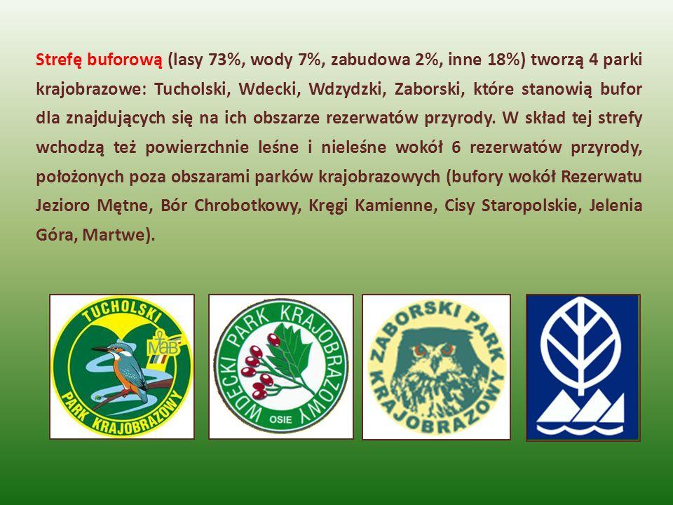 Strefę buforową (lasy 73%, wody 7%, zabudowa 2%, inne 18%) tworzą 4 parki krajobrazowe: Tucholski, Wdecki, Wdzydzki, Zaborski, które stanowią bufor dla znajdujących się na ich obszarze rezerwatów przyrody.