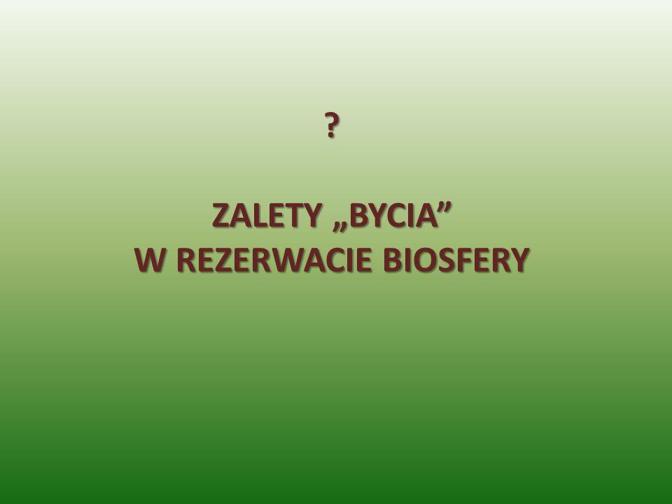 """ZALETY """"BYCIA W REZERWACIE BIOSFERY"""
