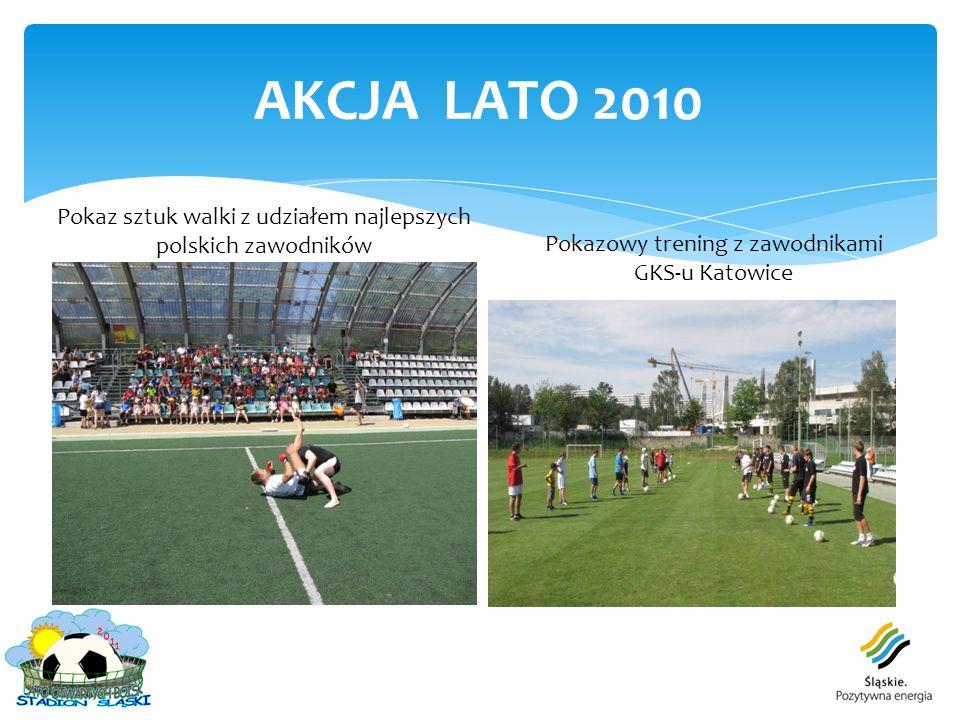 AKCJA LATO 2010 Pokaz sztuk walki z udziałem najlepszych polskich zawodników.