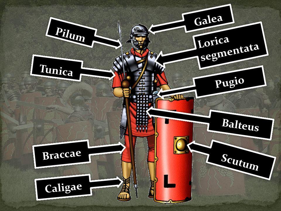 Galea Pilum Lorica segmentata Tunica Pugio Balteus Braccae Scutum Caligae