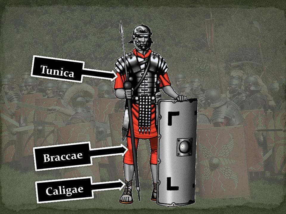 Tunica Braccae Caligae