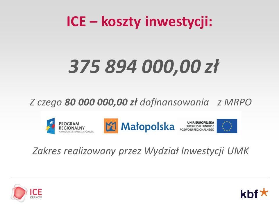 ICE – koszty inwestycji: