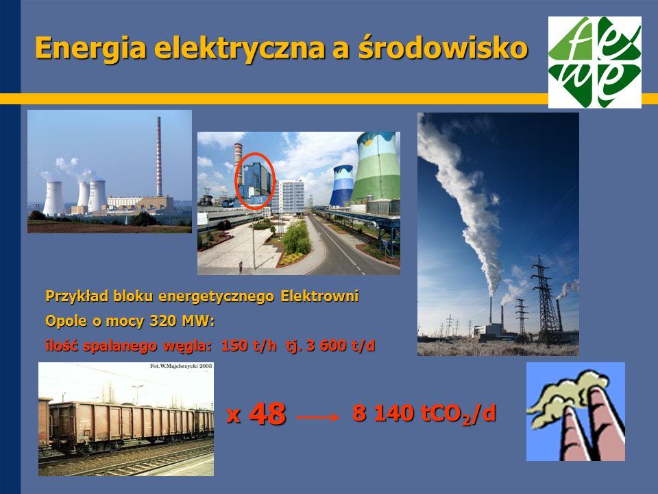 Energia elektryczna a środowisko