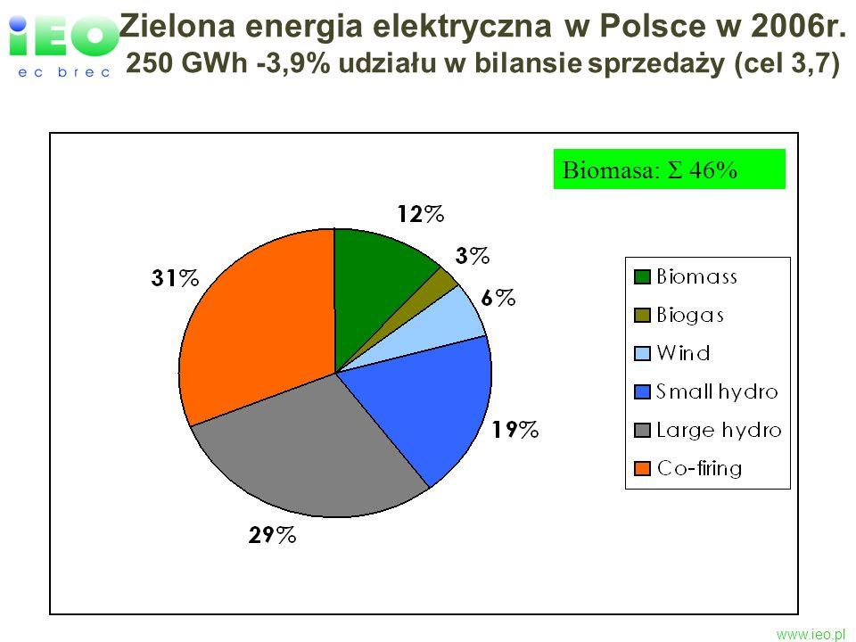 Zielona energia elektryczna w Polsce w 2006r