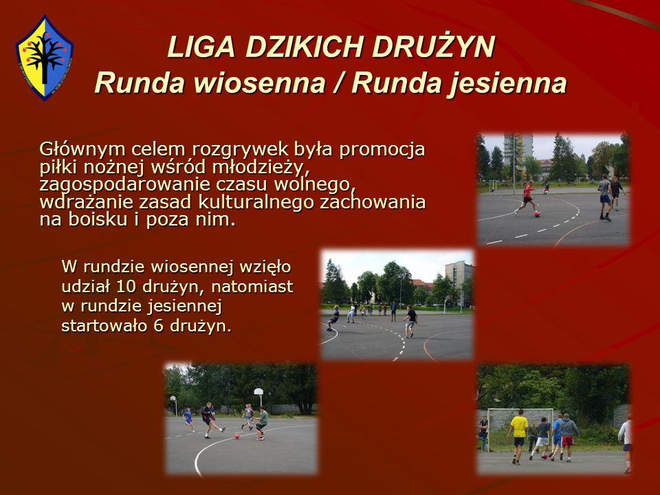 LIGA DZIKICH DRUŻYN Runda wiosenna / Runda jesienna