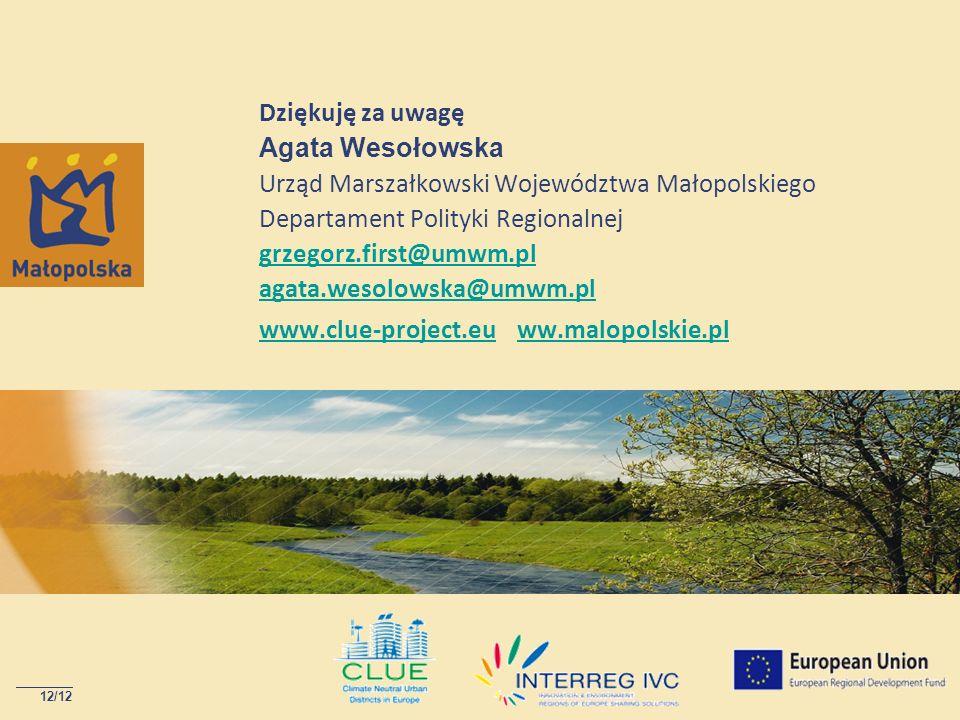 Dziękuję za uwagę Agata Wesołowska Urząd Marszałkowski Województwa Małopolskiego Departament Polityki Regionalnej grzegorz.first@umwm.pl agata.wesolowska@umwm.pl www.clue-project.eu ww.malopolskie.pl