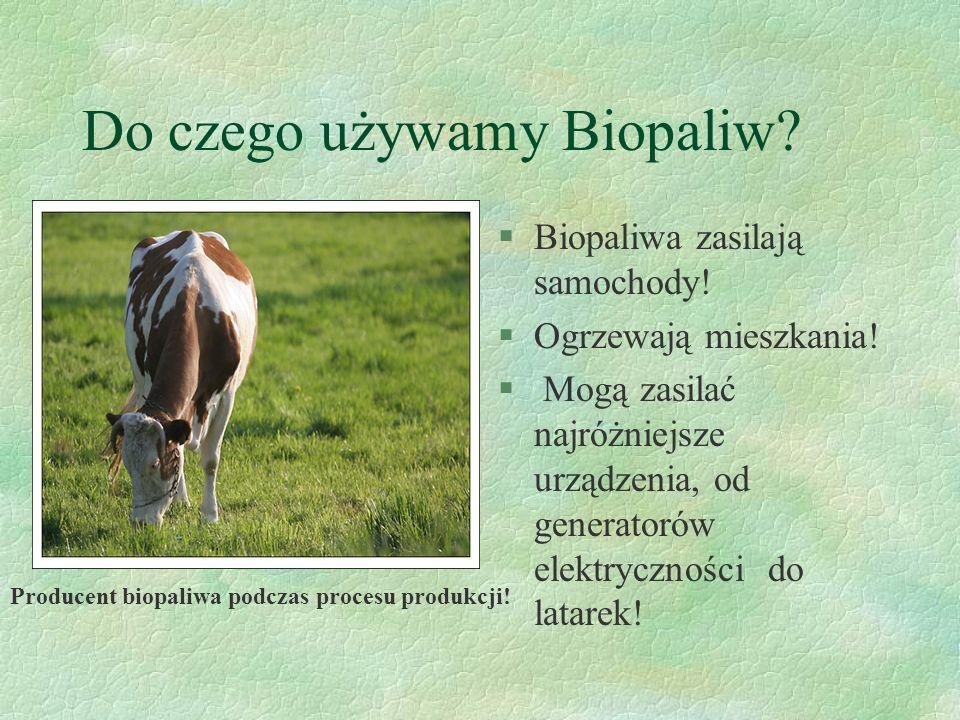 Do czego używamy Biopaliw