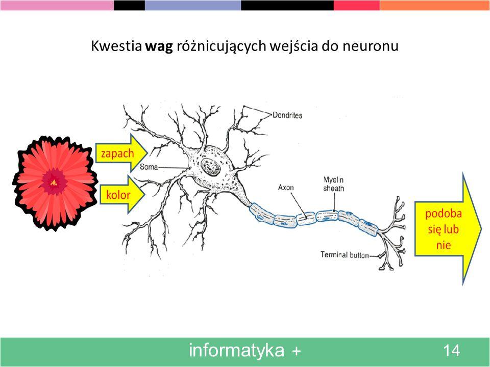 Kwestia wag różnicujących wejścia do neuronu