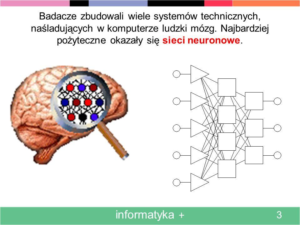 Badacze zbudowali wiele systemów technicznych, naśladujących w komputerze ludzki mózg. Najbardziej pożyteczne okazały się sieci neuronowe.