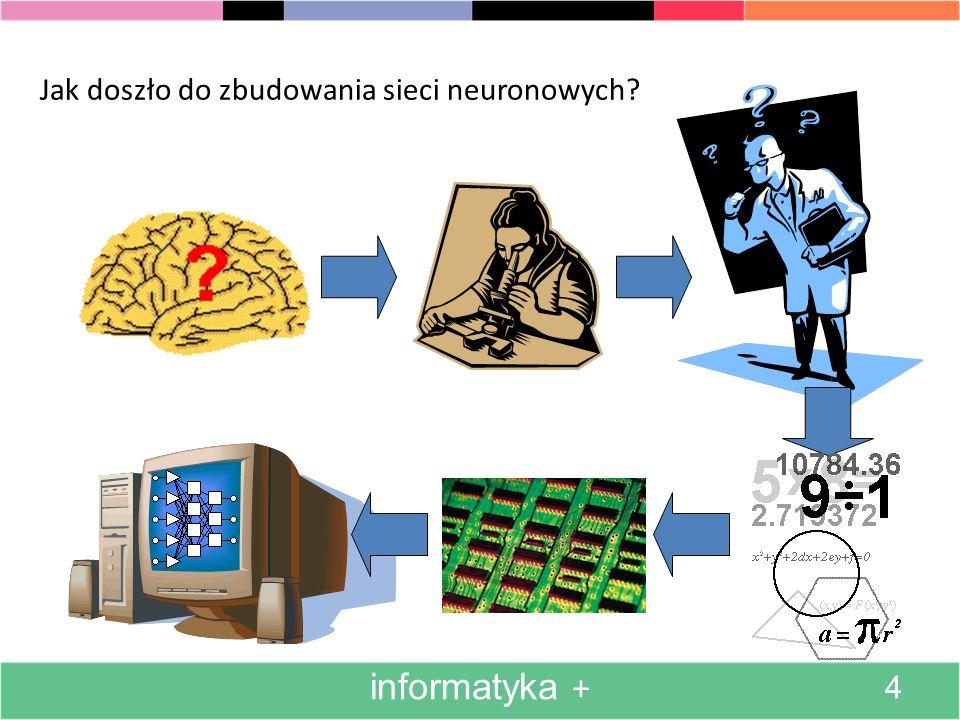 Jak doszło do zbudowania sieci neuronowych