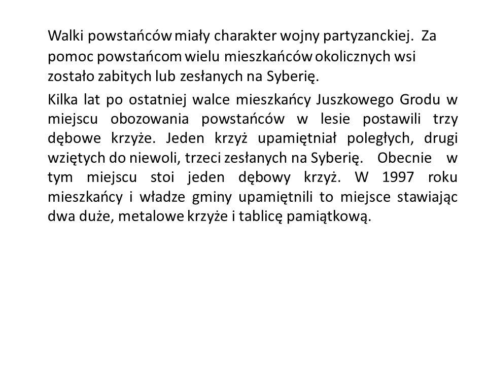 Walki powstańców miały charakter wojny partyzanckiej