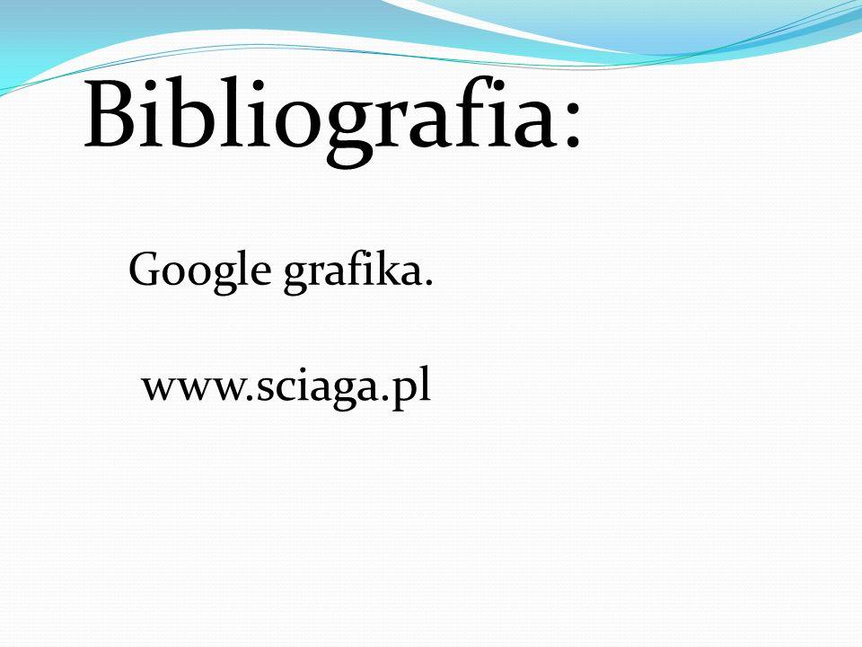Bibliografia: Google grafika. www.sciaga.pl