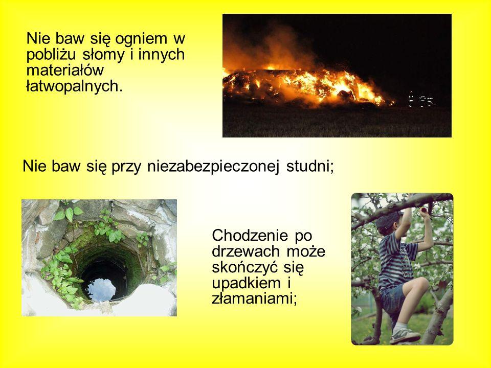 Nie baw się ogniem w pobliżu słomy i innych materiałów łatwopalnych.